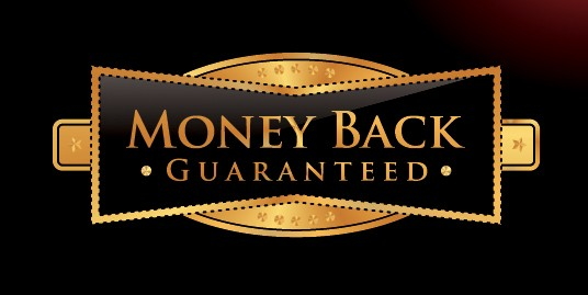 Money-Back-Home-Page